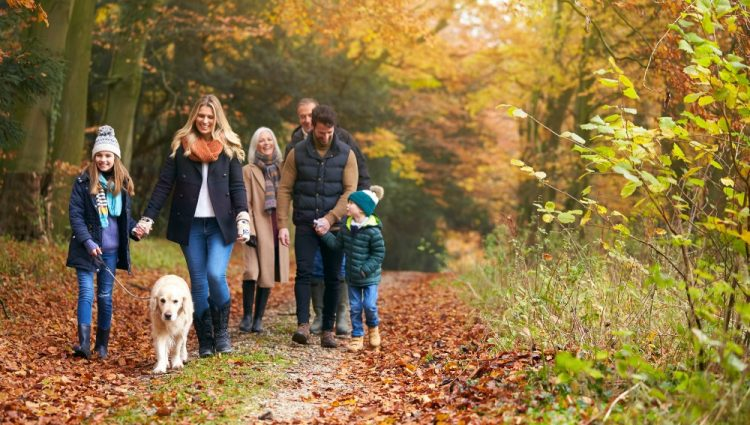 Things You Should Think About Before Taking On A Family Pet